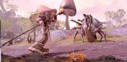 The Elder Scrolls Online 0