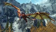 Благородний дракон кружляє.png