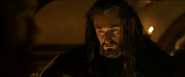 Thorin 02