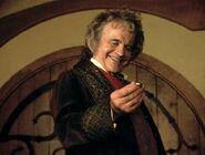Bilbo bolsón 07