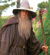 Gandalf-el-gris