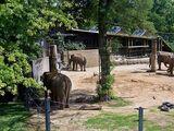 Zoologischer Stadtgarten Karlsruhe