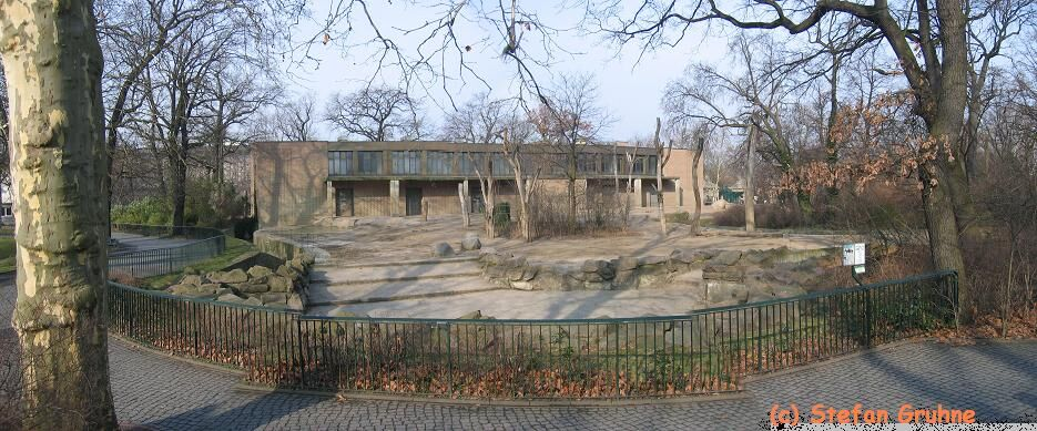 Berlin-aussen-kuehe-panorama.jpg