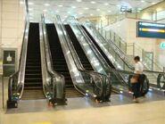 Kone escalators CCL stations SG