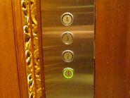 D-Line green buttons NDBH