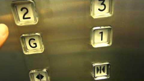 Boral Traction Elevators @ PPK House Adelaide SA
