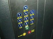 Dewhurst blue buttons
