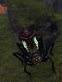 Swamp Spider 1.png