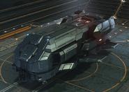 Type7 1