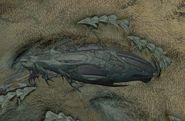 Leviathan Type Tuna