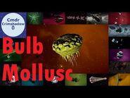 Bulb Molluscs - Spore Launch Kings - Elite Dangerous Codex Tour