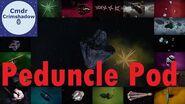Peduncle Pods of Dryman's Point and Sagittarius-Carina Arm - Elite Dangerous
