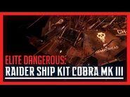 Raider Ship Kit - Cobra Mk III- Elite- Dangerous