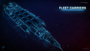 Fleet Carrier schematic view