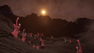 Alien-Sinuous-Tuber-1