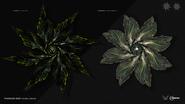 Thargoid-Hydra-and-Cyclops-Interceptors