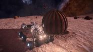 Space-Pumpkins-at-Mahon-Research-Base