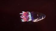 Bullet-Mollusc