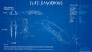 Dolphin-blueprint
