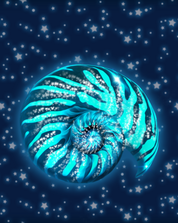 AmmoniteShell1.png