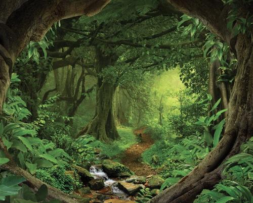 emerald vampire, water treasure, african rainforest