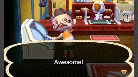Animal Crossing- New Leaf - Day 3- Permitting Developments