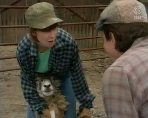 Episode 1566 (18th June 1991)