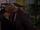 Episode 8771 (1st April 2020)
