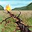 Icono-Terremoto