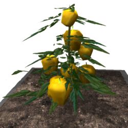 Space Durian (Plant).png