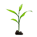 Corn Sprout.png