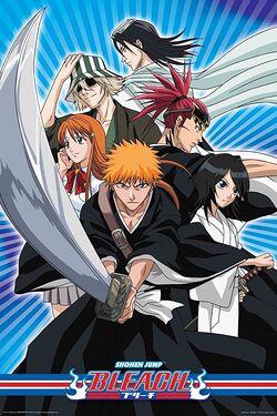 Bleach Anime 2.jpg