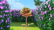 Sunny Savanna Ep3 rose