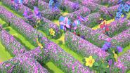 Sunny Savanna Ep3 maze