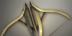 ItemCrossbow1Strategic2Tier2Large.png