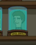 Samuel Genitals
