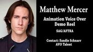 Matthew Mercer - Animation Voice Over Demo Reel