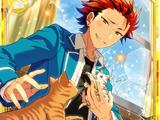 (Lantern and Cat) Kuro Kiryu