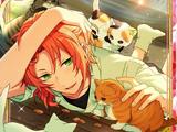 (Robin Hood) Leo Tsukinaga