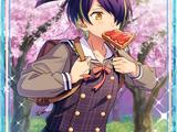 (Shy 1st Year) Shinobu Sengoku