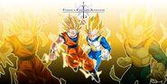 Goku and Vegeta in comparison
