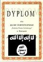 STOSÓNKI DYPLOMOFFE Z ISIS
