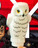 Hedwig Cameo