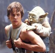 Luke Skywalker Dagobah Based On