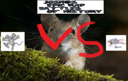 Squak vs nibbles