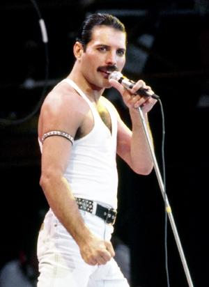 Freddie Mercury Based On.png