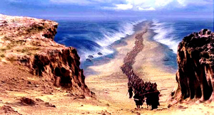 The Red Sea Based On.png