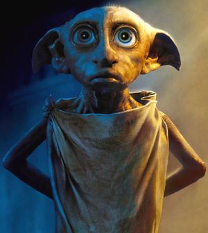 Dobby Based On.webp