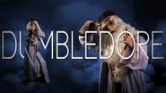 ERB 11 Dumbledore