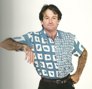 Robin Williams Based On.png